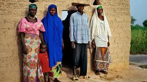 Islamic Polygyny